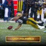 2x Super Bowl Champion. 8x Pro Bowler. All-time hair. Will  S Troy Polamalu make...